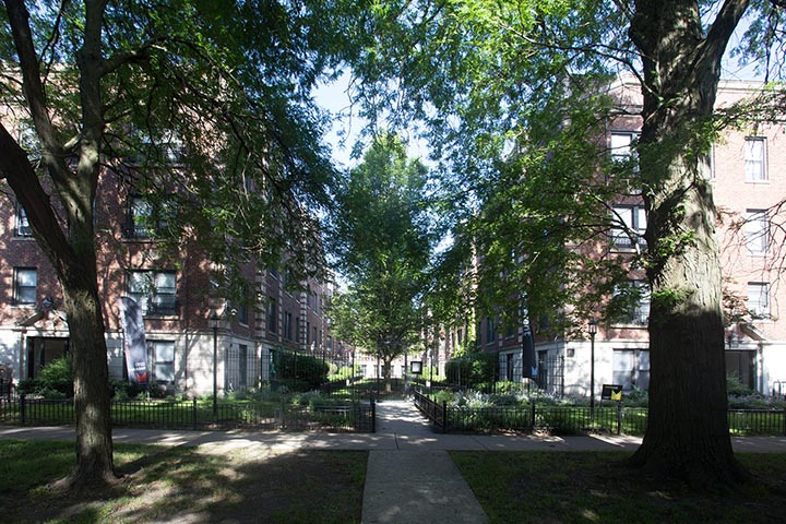 Woodlawn Terrace